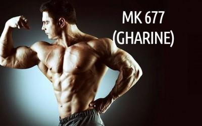 GHARINE (MK677)